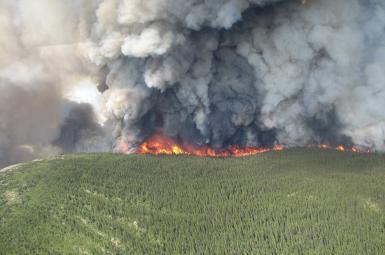 تصویری از آتش در بریتیشکلمبیا در ۲۰۱۴ میلادی / رویترز