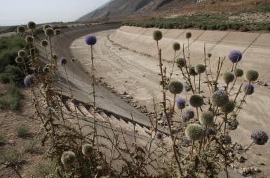 کاهش ۵۱ درصدی بارش در ایران طی پنج ماه گذشته