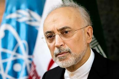 Ali Akbar Salehi, the head of Iran's Atomic Energy Organization. FILE