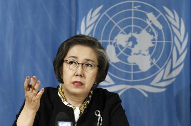 یانگی لی گزارشگر سازمان ملل