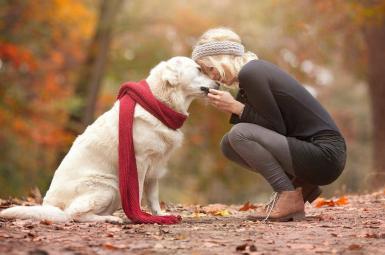 دوست داشتن حیوانات از سوی انسانها