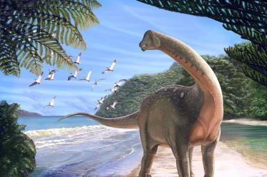 کشف فسیل گونهای جدید از دایناسورها در صحرای مصر