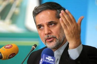 حسین نقوی حسینی، عضو کمیسیون امنیت ملی و سیاست خارجی کشور