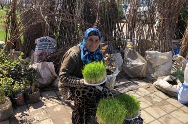 در آستانه نوروز - عکسهایی از دوشنبه تاجیکستان