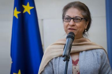 عاصمه جهانگیر، گزارشگر ویژه سازمان ملل