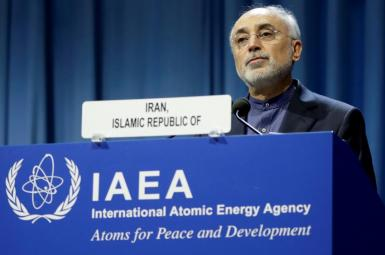 Ali Akbar Salehi Iran's atomic chief at the IAEA headquarters. Undated
