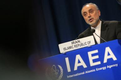 علی اکبر صالحی، رئیس سازمان انرژی اتمی ایران