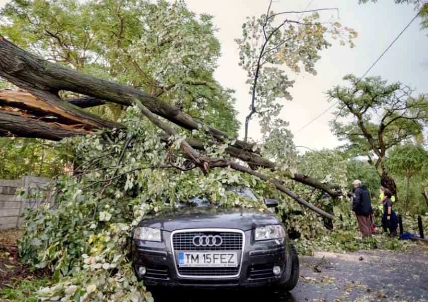 طوفان غیرمتظرهای با سرعت ۱۰۰ کیلومتر در ساعت، درغرب کشور رومانی
